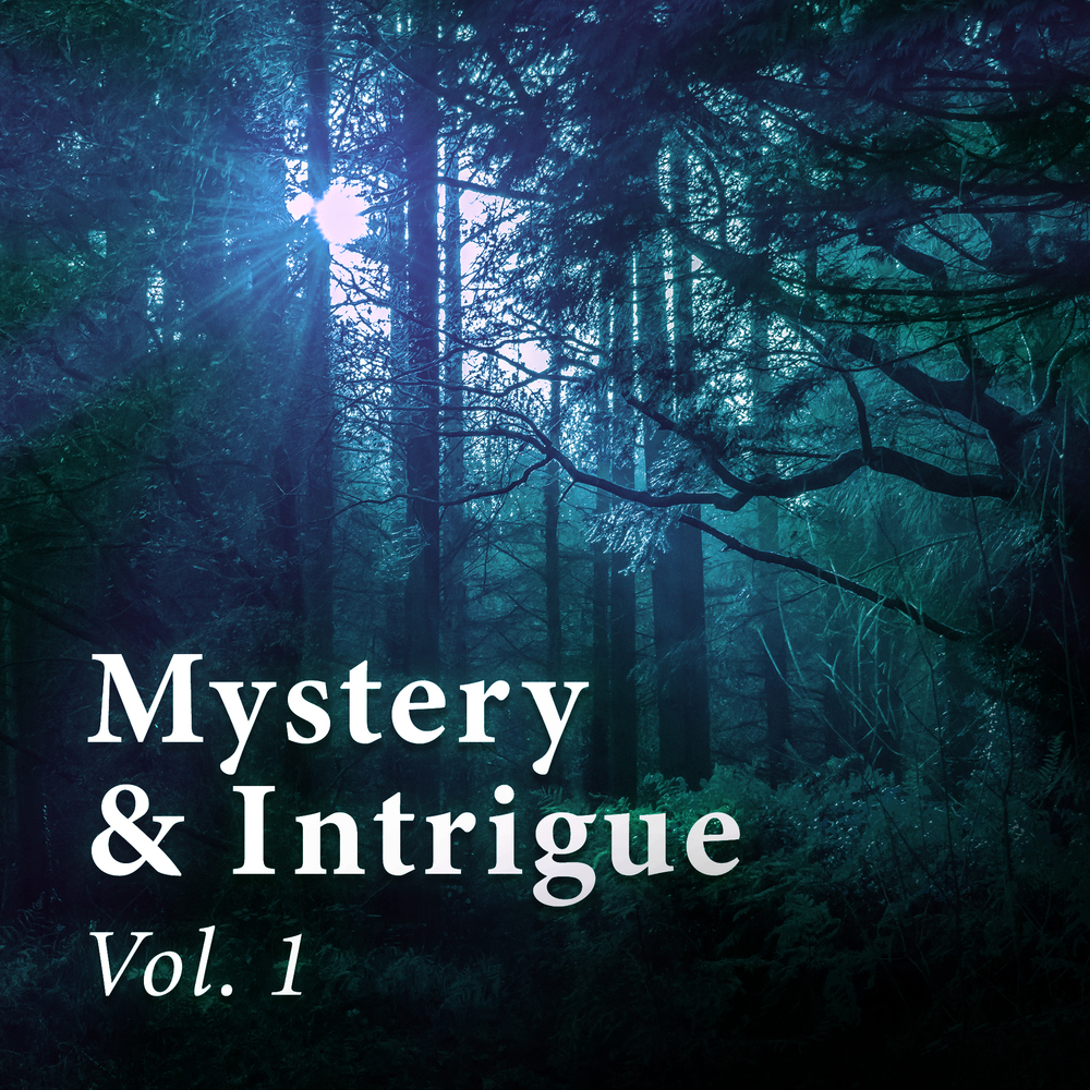 Cover for Mystery & Intrigue Vol. 1