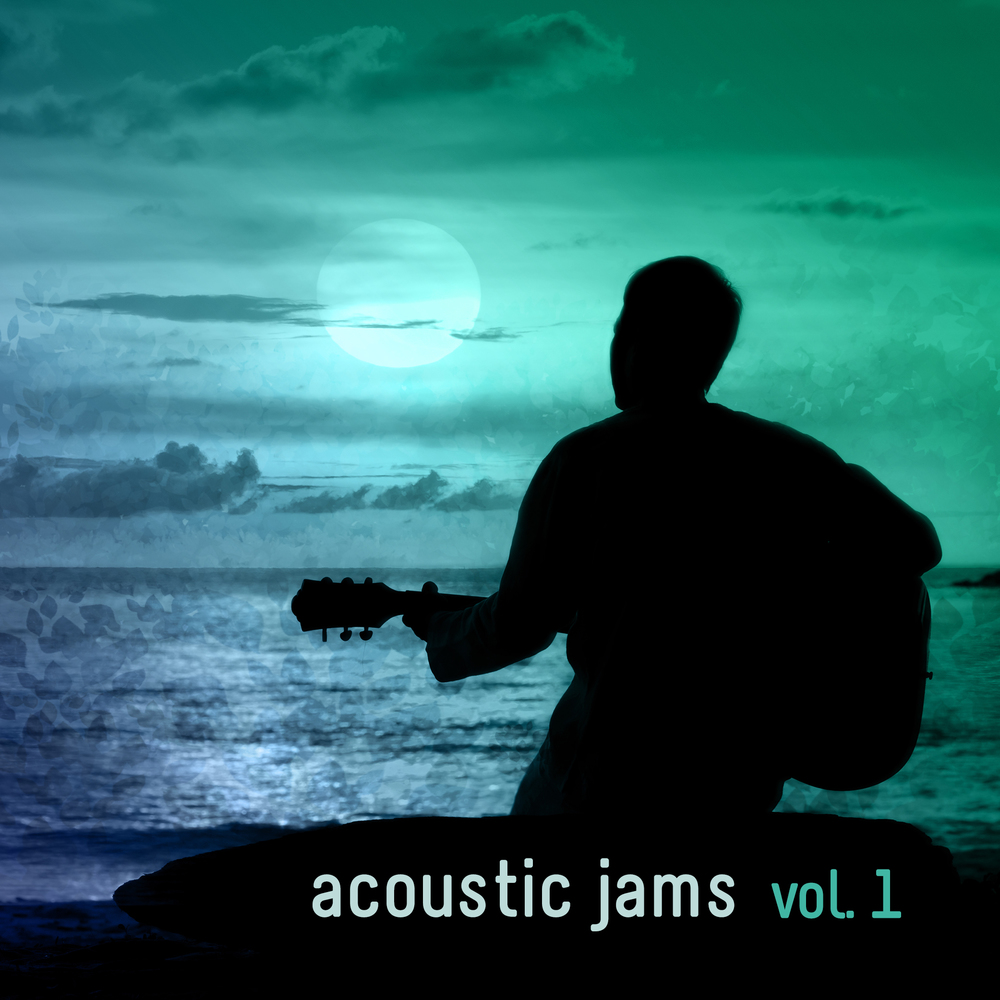 Acoustic Jams Vol. 1